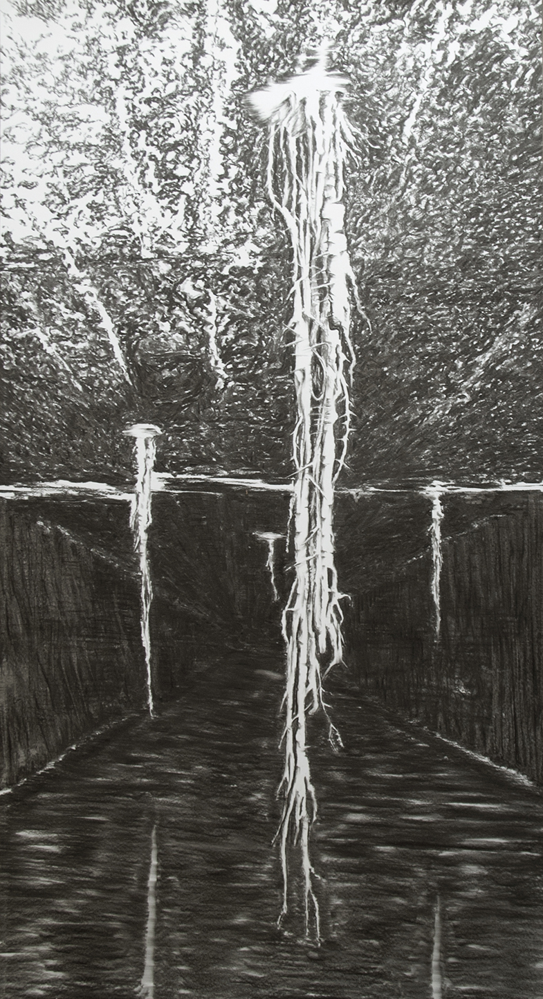 2020 Beginning of Forest 203x1125 charcoal on paper